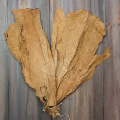 Connecticut Shade, Whole Leaf Tobacco, Cigar Wrapper Grade