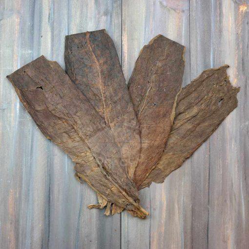 Dominican Tobacco, Cigar Binder Grade