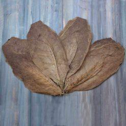 Nicaragua Rosado Wrapper, WIDE LEAVES
