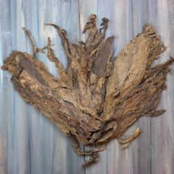 Paraguay Flojo Viso Tobacco