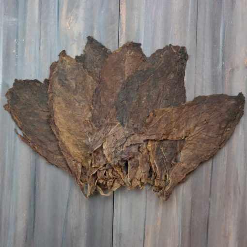 Corojo 99 Tobacco, Ligero Priming
