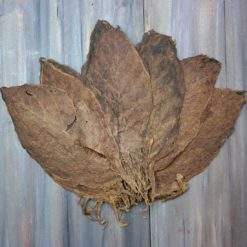 Nicaragua HAbano Seco Whole LEaf Tobacco