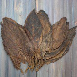 Nicaragua Habano Viso Tobacco, Whole LEaves